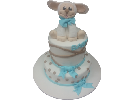 Baby Shower Cakes-BS40